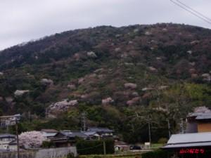20160402浮野n山.jpg